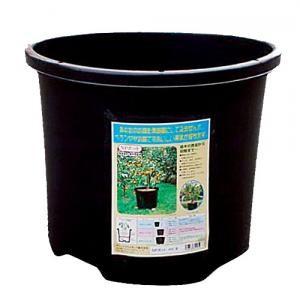 鉢のサイズと土の容量 3号ポットはどれくらい? [ …