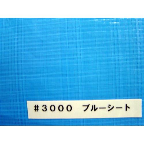 コーナン オリジナル ブルーシート3000 1.8×1.8m 約2畳