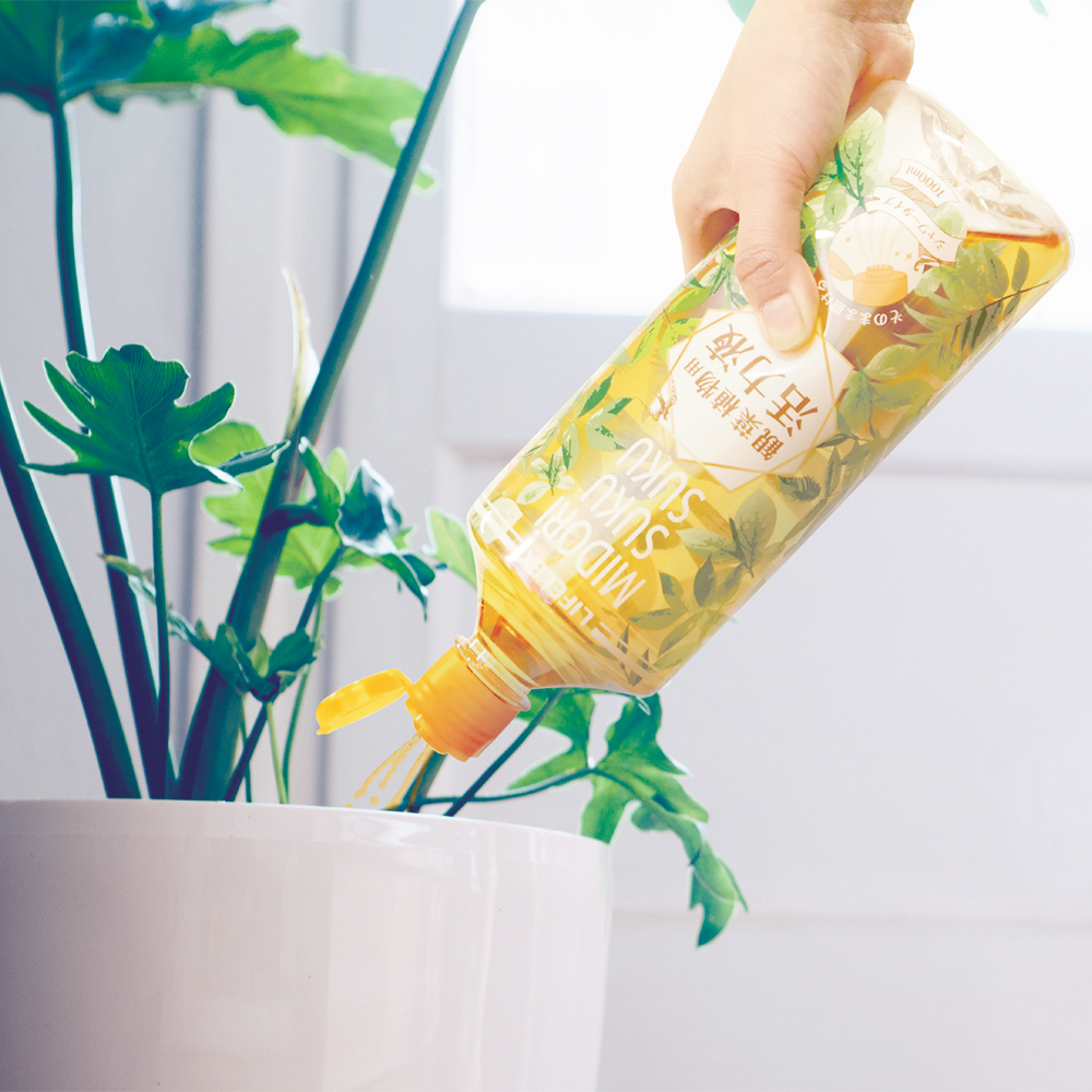 コーナン オリジナル 緑スクスク活力液 観葉植物用 1000ml