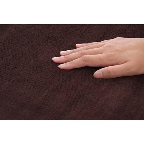 イケヒコ・コーポレーション(IKEHIKO)  ラグ カーペット 3畳 洗える 抗菌 防臭 無地 『ピオニー』 ブラウン 約200×250cm (ホットカーペット対応)