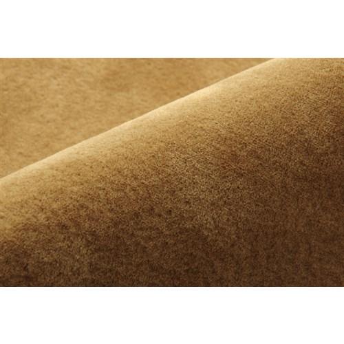 イケヒコ・コーポレーション(IKEHIKO)  ラグ カーペット 3畳 洗える 無地 『イーズ』 ベージュ 約185×240cm 裏:すべりにくい加工 (ホットカーペット対応)