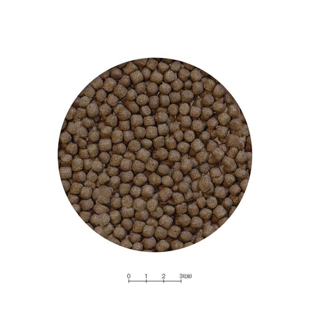 メダカの大粒餌 10g