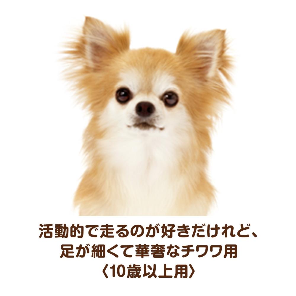 ベストバランス ふっくら仕立て チワワ用 10歳以上用 1.8kg 【ドッグフード ソフト 半生】