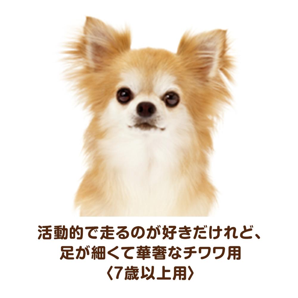 ベストバランス カリカリ仕立て チワワ用 7歳以上用 2kg 【ドッグフード ドライ】