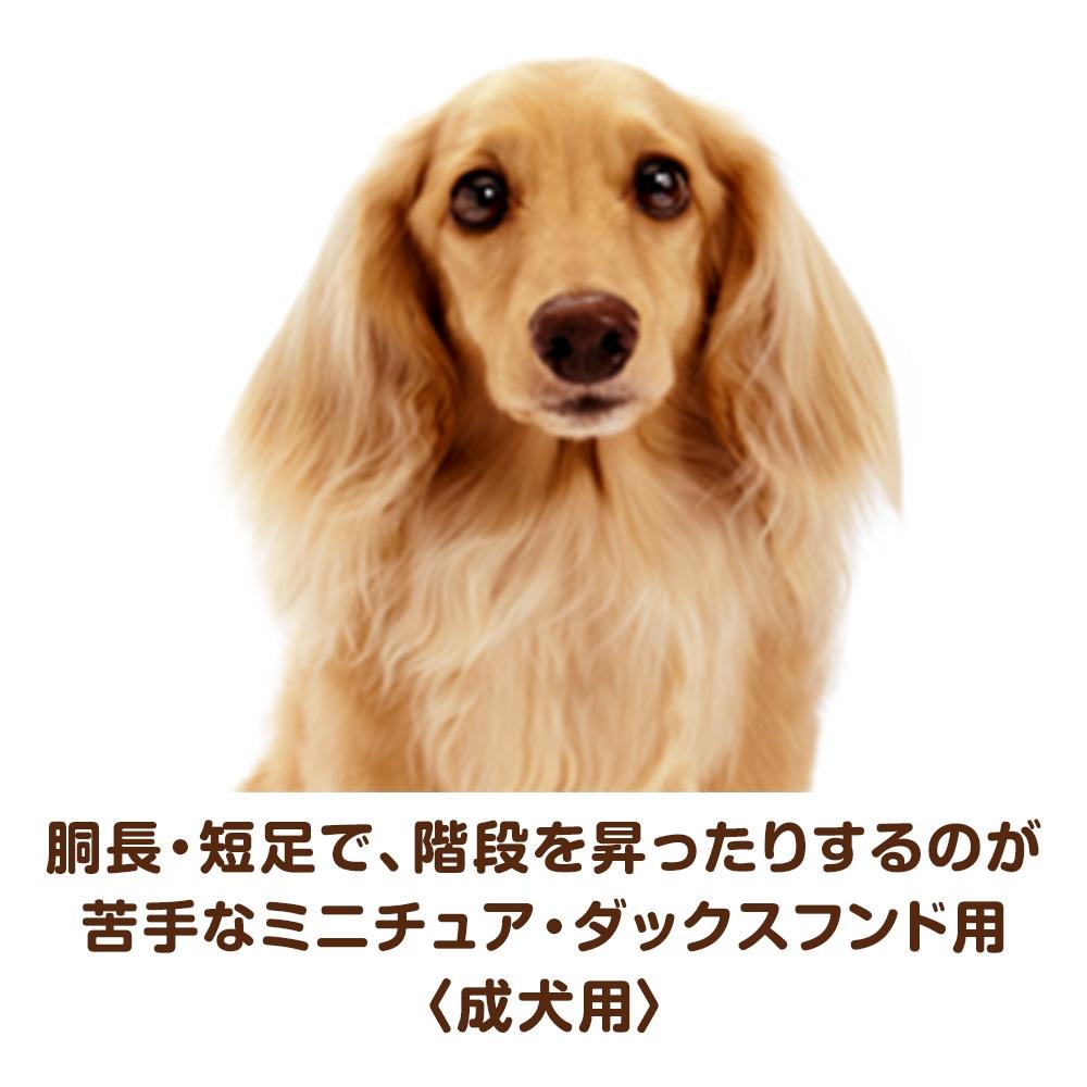 ベストバランス カリカリ仕立て ミニチュアダックスフンド用 成犬用 2kg 【ドッグフード ドライ】