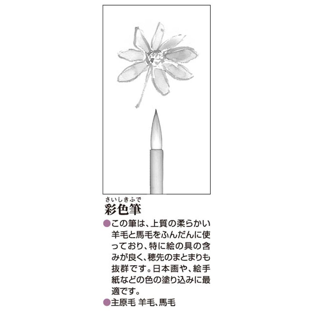 彩色筆大 AN−08