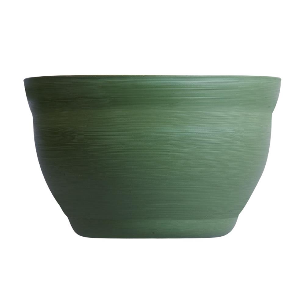 メダカの小鉢 とくさ