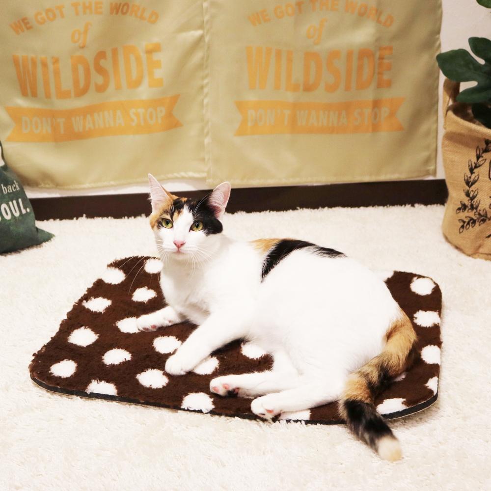 遠赤外線炭パワー 超暖もこほわマットS 犬猫マット