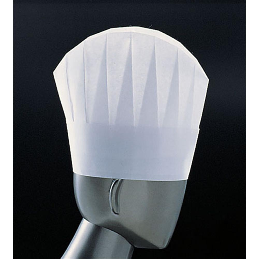 パリス ライトハット N33110 (10枚入)