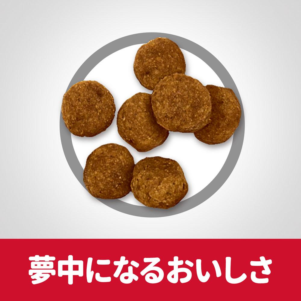 ヒルズ サイエンス・ダイエット ドッグフード アダルト 1歳〜6歳 小粒 成犬用 チキン 3.3kg