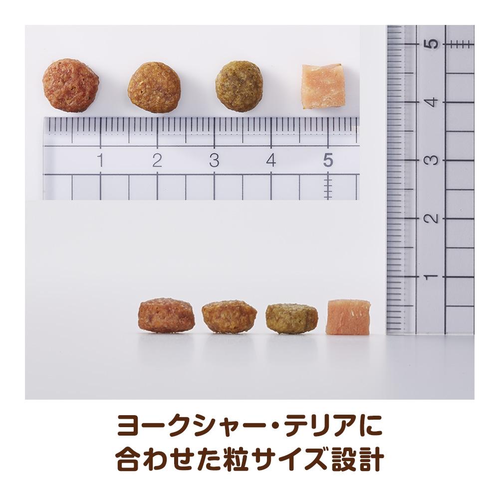 ベストバランス カリカリ仕立て ヨークシャーテリア用 成犬用 2kg 【ドッグフード ドライ】