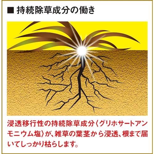 フマキラー 根まで枯らす虫よけ除草王プレミアム 1L