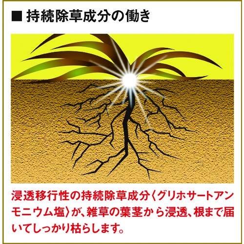 フマキラー 根まで枯らす虫よけ除草王プレミアム 2L
