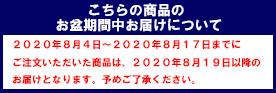 イケヒコ・コーポレーション(IKEHIKO)  国産固綿40mm使用 マイクロファイバー生地 ふっくら敷 『フィーラF敷』 ブラウン 190×240cm