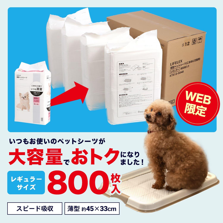 【 めちゃ早便 】コーナン オリジナル 薄型ペットシーツ レギュラー 800枚 通販限定品