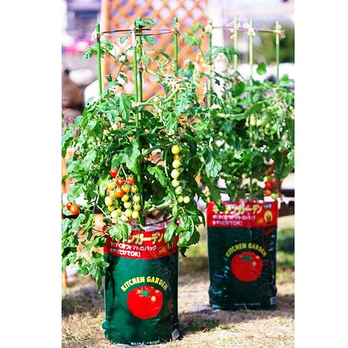キッチンガーデン トマト用培養土 トマトの土 15L ※最大3袋まで基本送料600円(税別)でお届けします。(一部地域除く)