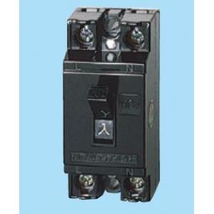 パナソニック(Panasonic) 安全ブレーカー 2P1E15A BS1111