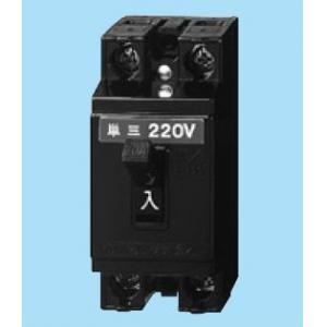 パナソニック(Panasonic) 安全ブレーカ2P2E20A BS2022