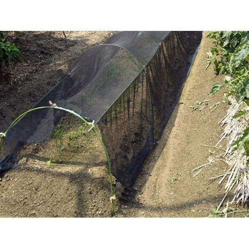 農園芸用寒冷紗 黒 遮光率約50% 1.8×100m巻