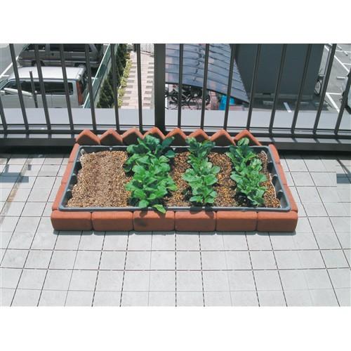 ベランダファーム 野菜館 50×100×10cm