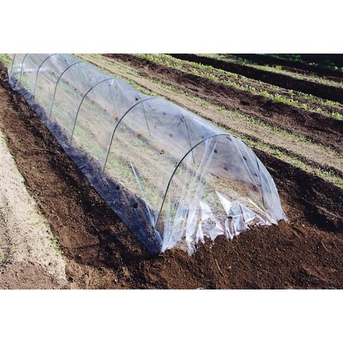 ぽかぽかシート 透明 穴あき 厚み0.04mm×巾1.5m×長さ10m