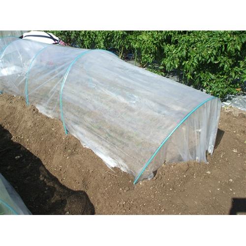 ぽかぽかシート 透明 厚み0.04mm×巾1.35m×長さ20m