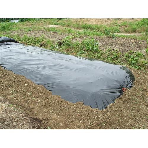 ぽかぽかシート 黒 厚み0.03mm×巾1.35m×長さ20m