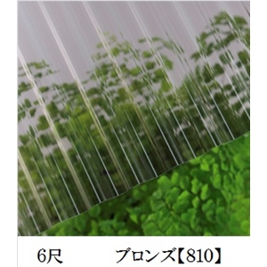 JIS規格品ポリカナミイタ ブロンズ 6尺 ×10枚セット