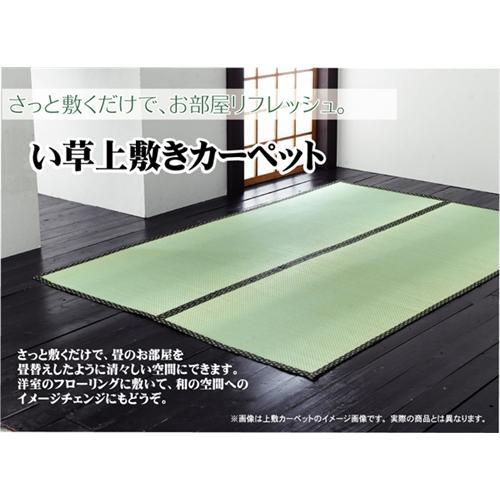 イケヒコ・コーポレーション(IKEHIKO)  純国産 双目織 い草上敷カーペット 『草津』 本間6畳 約286×382cm