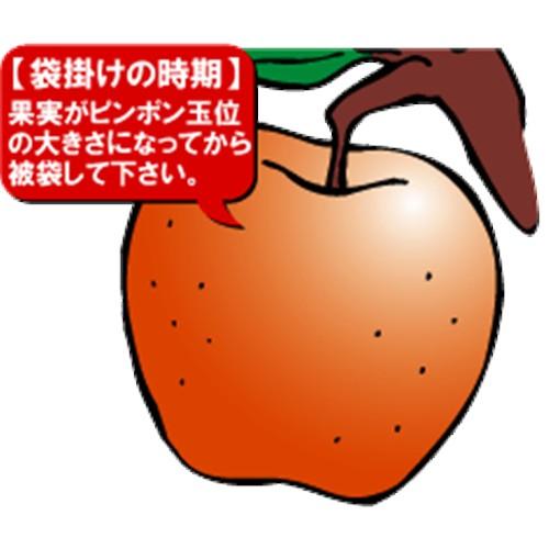 果実袋 リンゴ 100枚入り