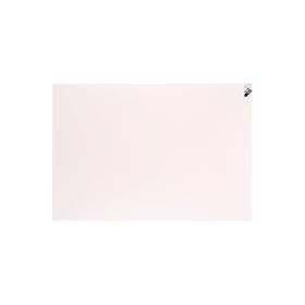 プレパネ(プレゼンテーションパネル) B2 白 360021