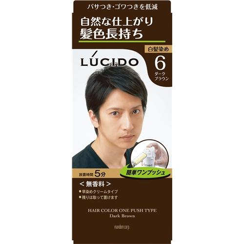 ルシード ワンプッシュケアカラー (医薬部外品) 6 ダークブラウン