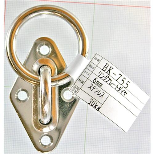 リングプレートダイヤ BK−755 ステンレス 6MM