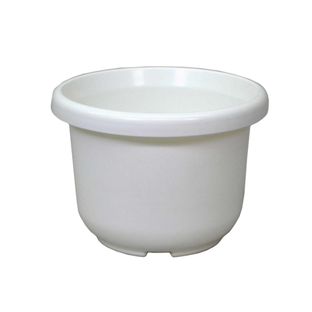 輪鉢F型 8号 ホワイト