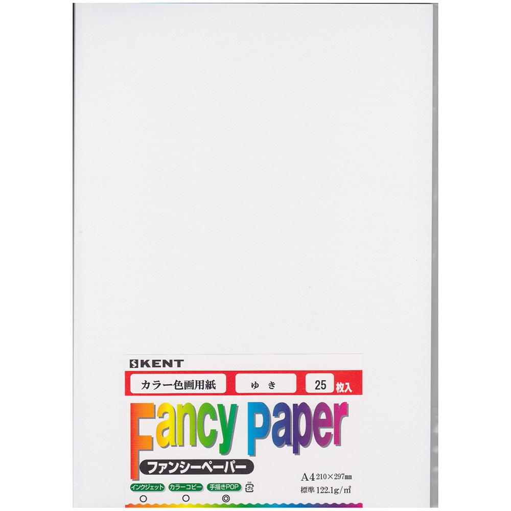 色画用紙 A4 25枚入り ゆき
