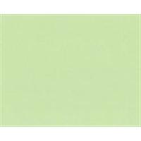 カラー合板 G−2 ウグイス 約2.5×910×1820mm 10枚セット