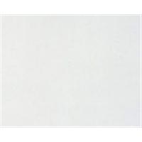 カラー合板 G−5 ホワイト 約2.5×910×1820mm 10枚セット