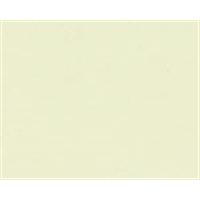カラー合板 G−7 ホワイトアイボリー 約2.5×910×1820mm 10枚セット