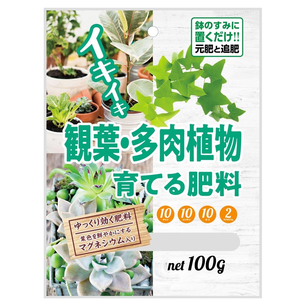 朝日工業 観葉・多肉植物を育てる肥料 100g