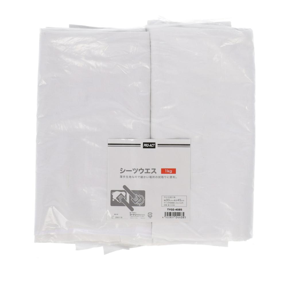 コーナン オリジナル PROACT シーツウエス 1kg TY02−4085