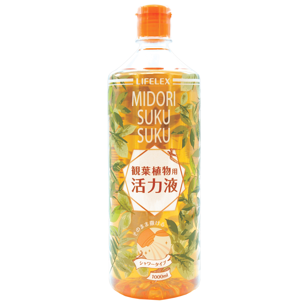 ※※コーナン オリジナル 緑スクスク活力液 観葉植物用 1000ml