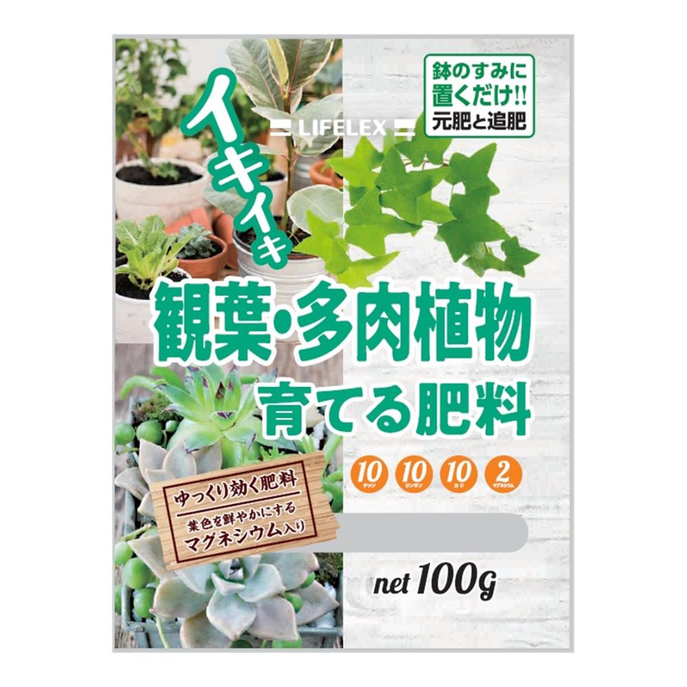 コーナン オリジナル 観葉多肉植物を育てる肥料 100g