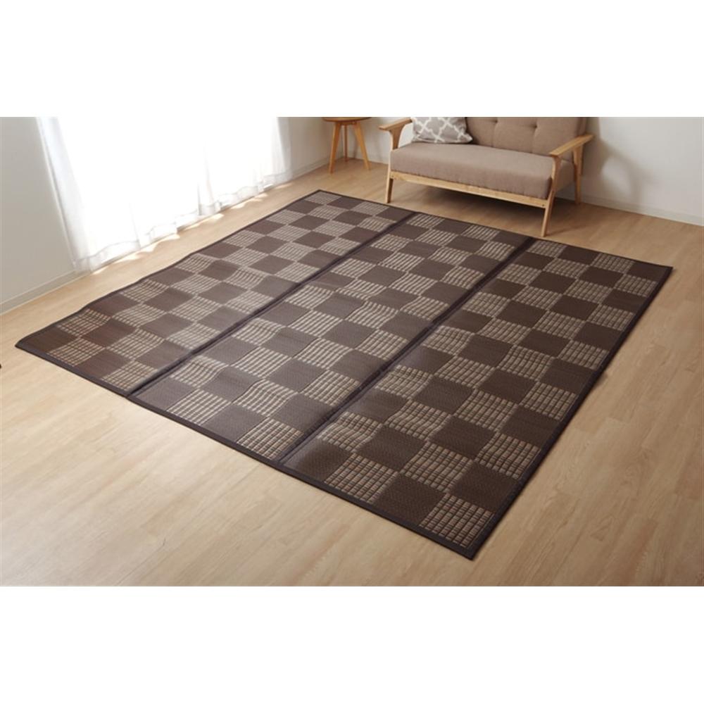 イケヒコ・コーポレーション(IKEHIKO)  ラグ  PPカーペット 『Fウィード』 ブラウン 江戸間2畳(約174×174cm)