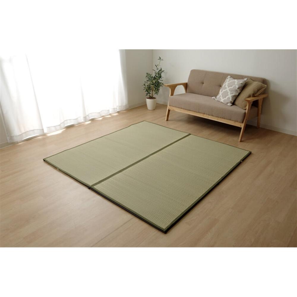 イケヒコ・コーポレーション(IKEHIKO)  い草 置き畳カバー 『ユニットカバー』 164×164cm ゴムバンド付き