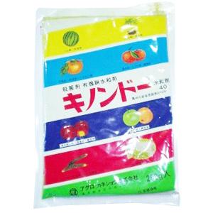 キノンドー水和剤40 250g