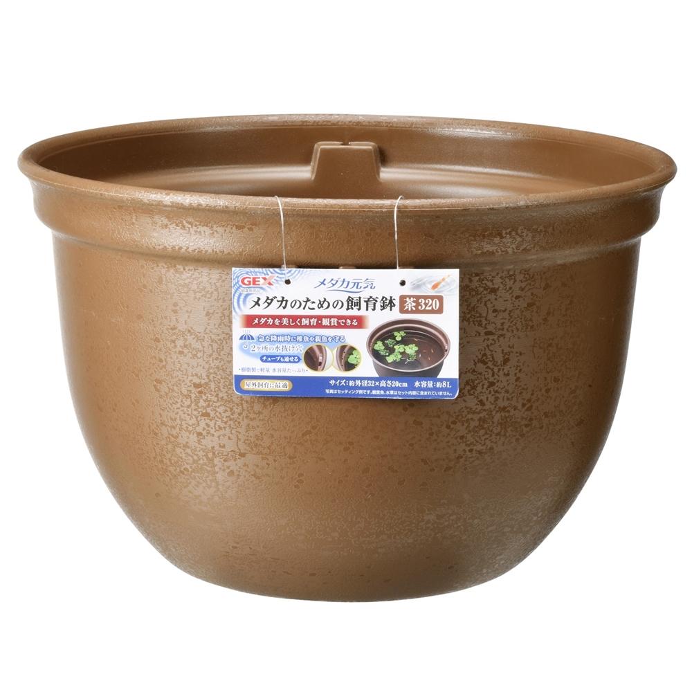 ジェックス メダカ元気 メダカのための飼育鉢 茶320