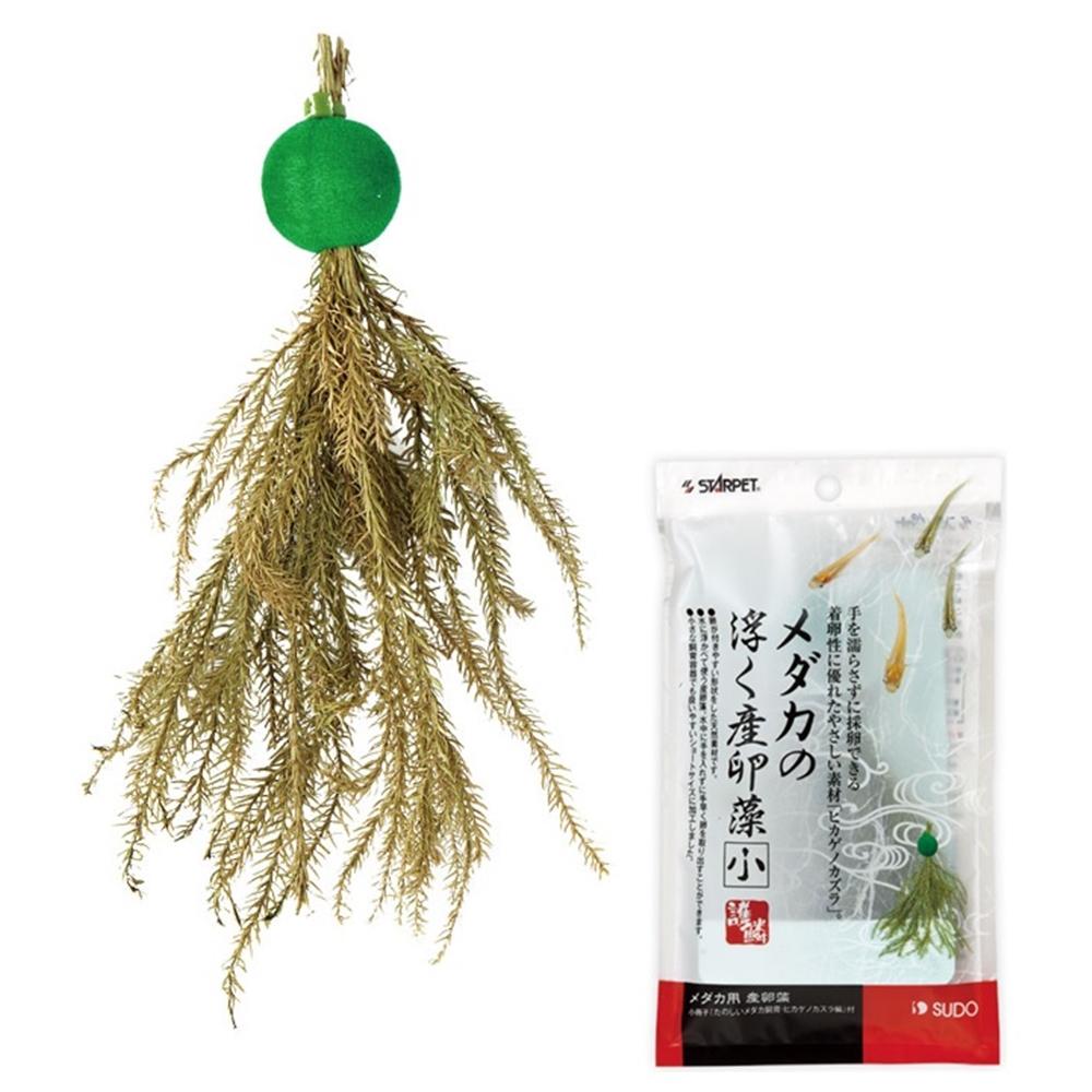 メダカの浮く産卵藻(小)