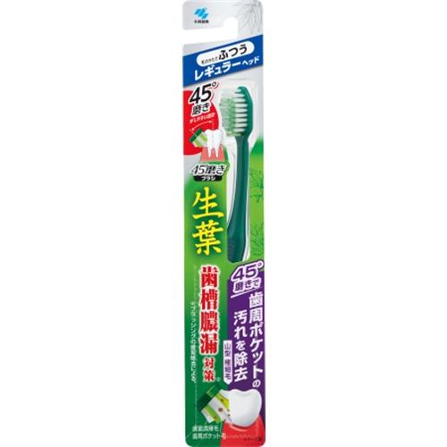 生葉45°磨きブラシ レギュラー ふつう