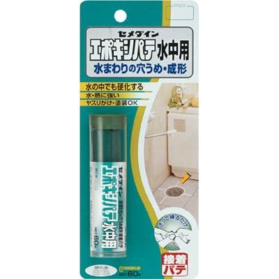 セメダイン(Cemedine)  エポキシパテ水中用 P60g HC119