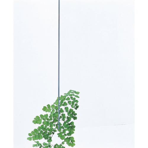 光(Hikari) アクリル板(透明)3×320×545 A000-3S